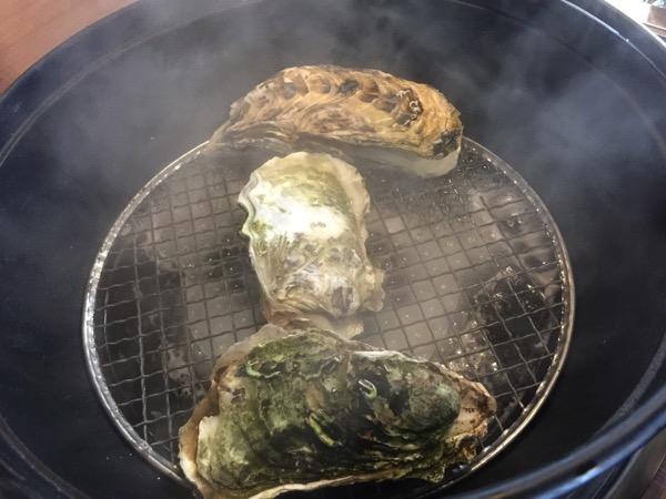 Kaki no hoshi 4472