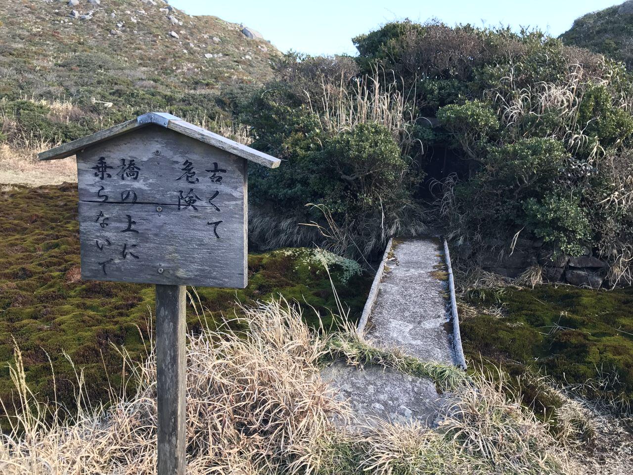 Kozushima tamashima 4757