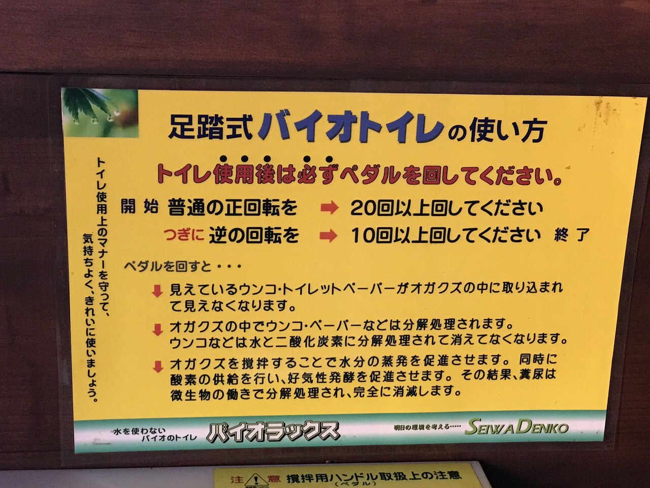Kozushima tamashima 4761