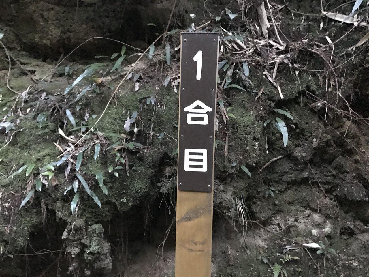 Kozushima tamashima 4810