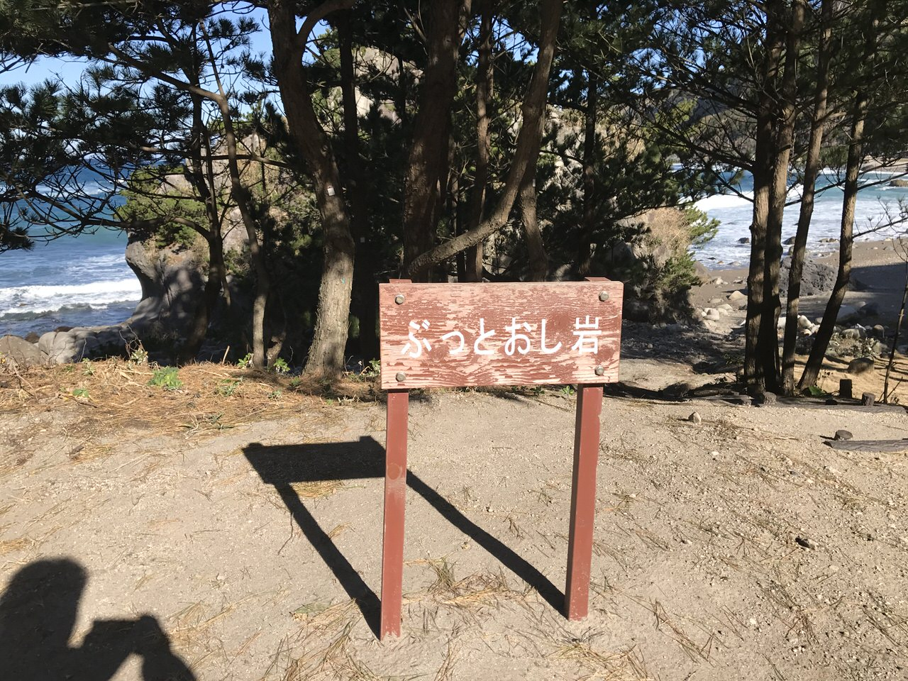 Kozushima tamashima 4849