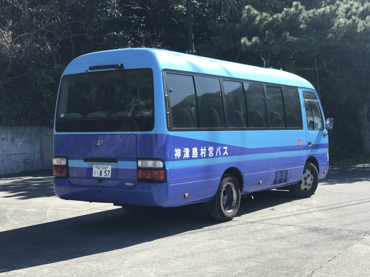 Kozushima tamashima 4901