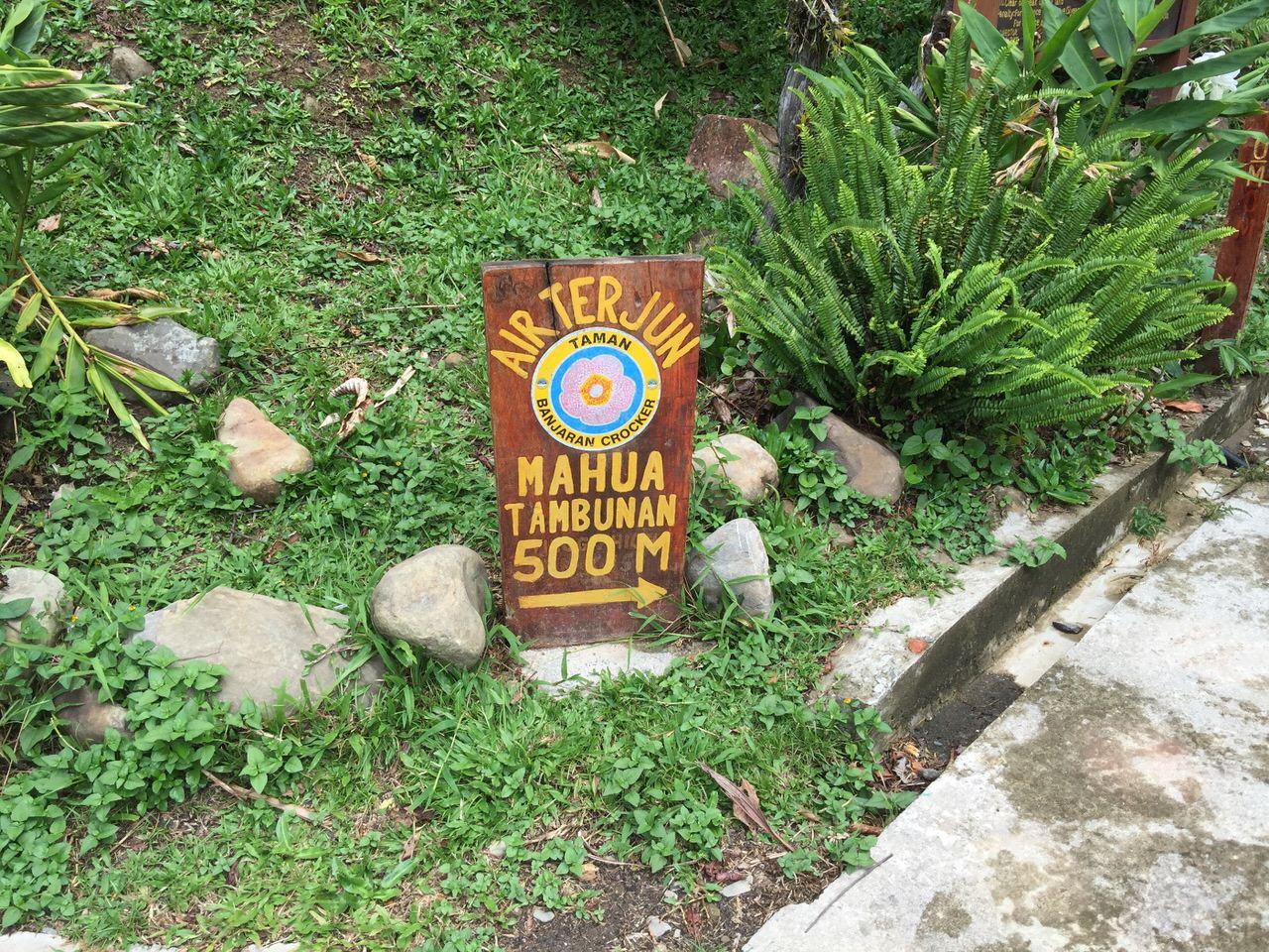 Mahua waterfall 4635