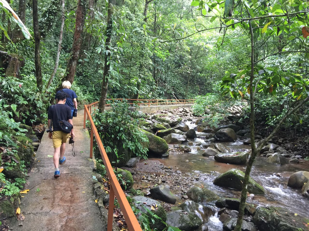 Mahua waterfall 4638