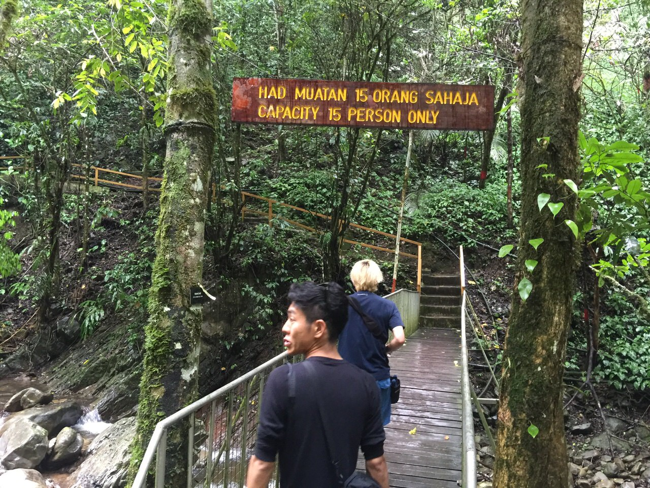 Mahua waterfall 4639