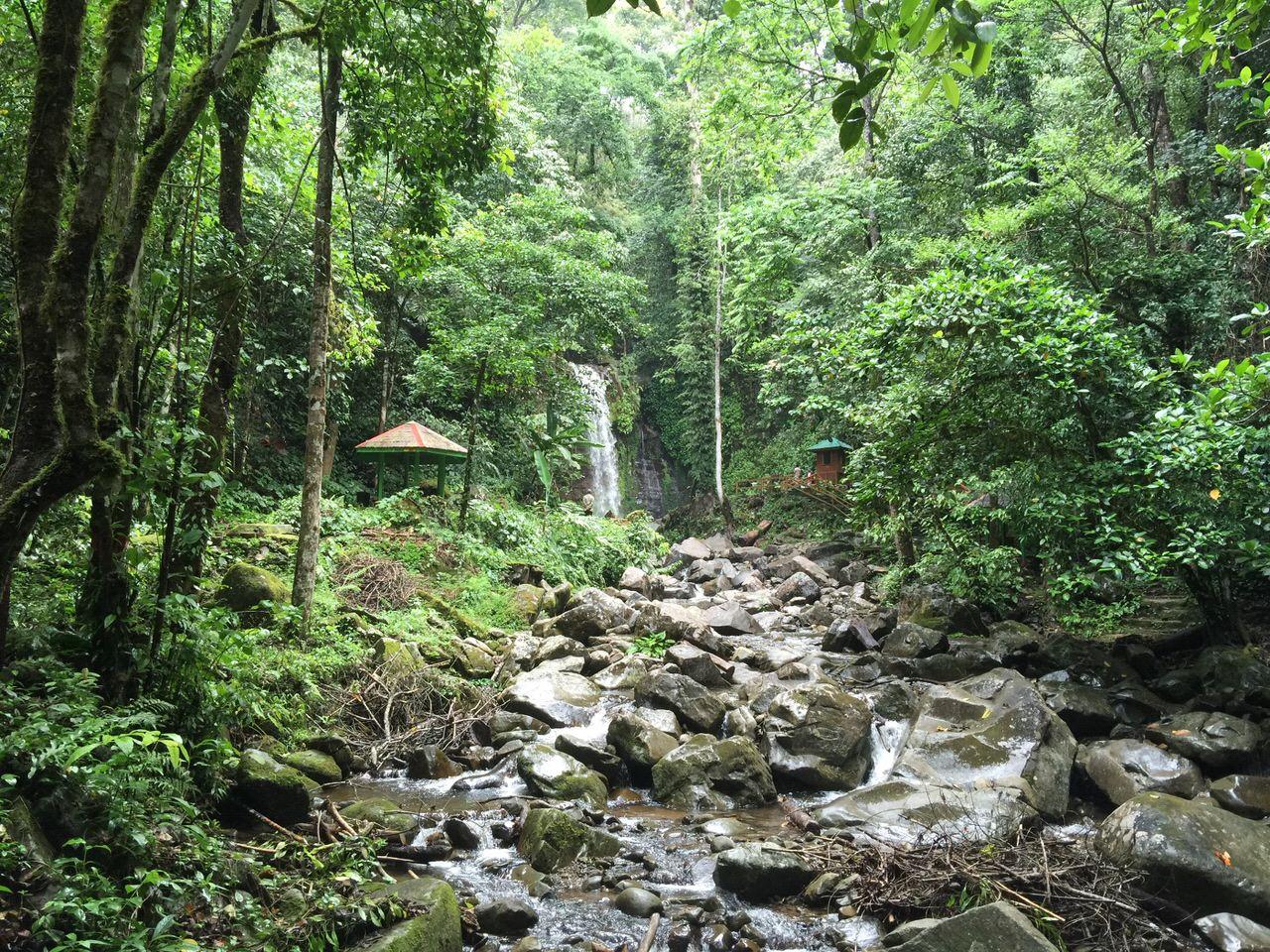 Mahua waterfall 4640
