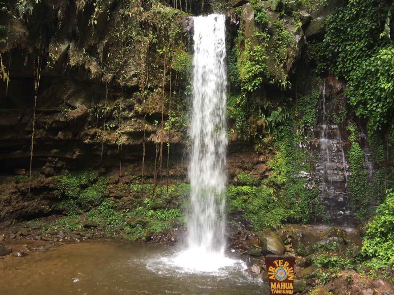 Mahua waterfall 4642