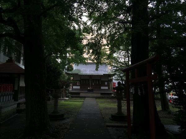 Maimai ido 6131