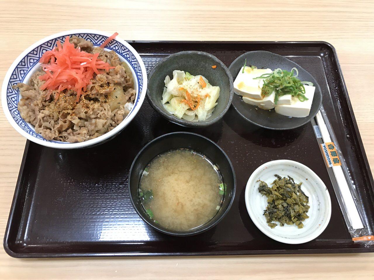Narita airport yoshinoya 0383