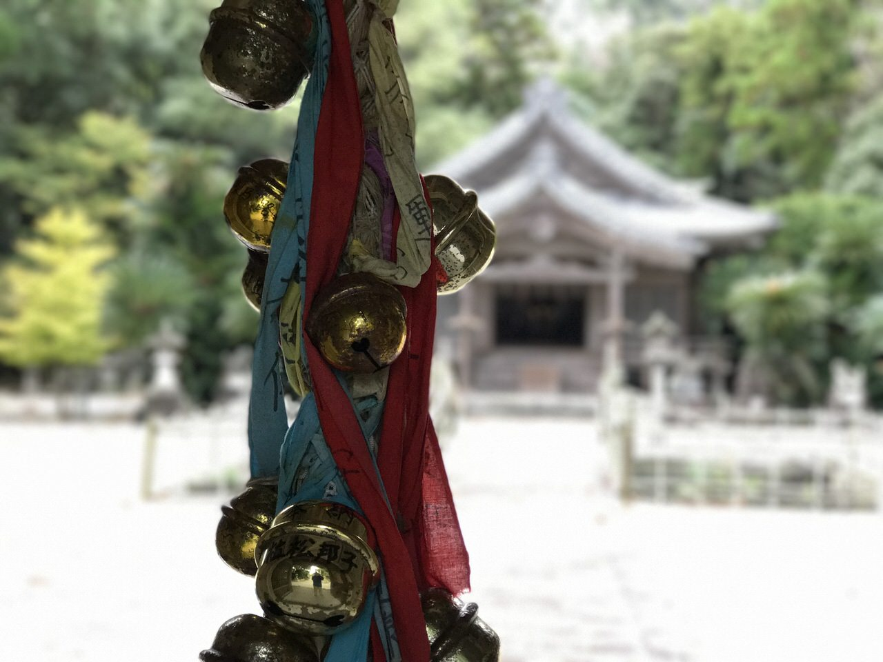 Niijima travel 2301