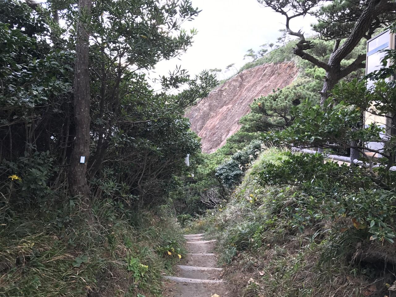 Niijima travel 2562
