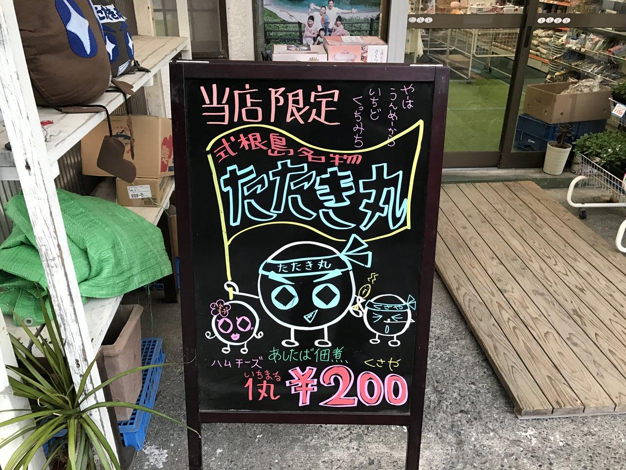 Niijima travel 2596