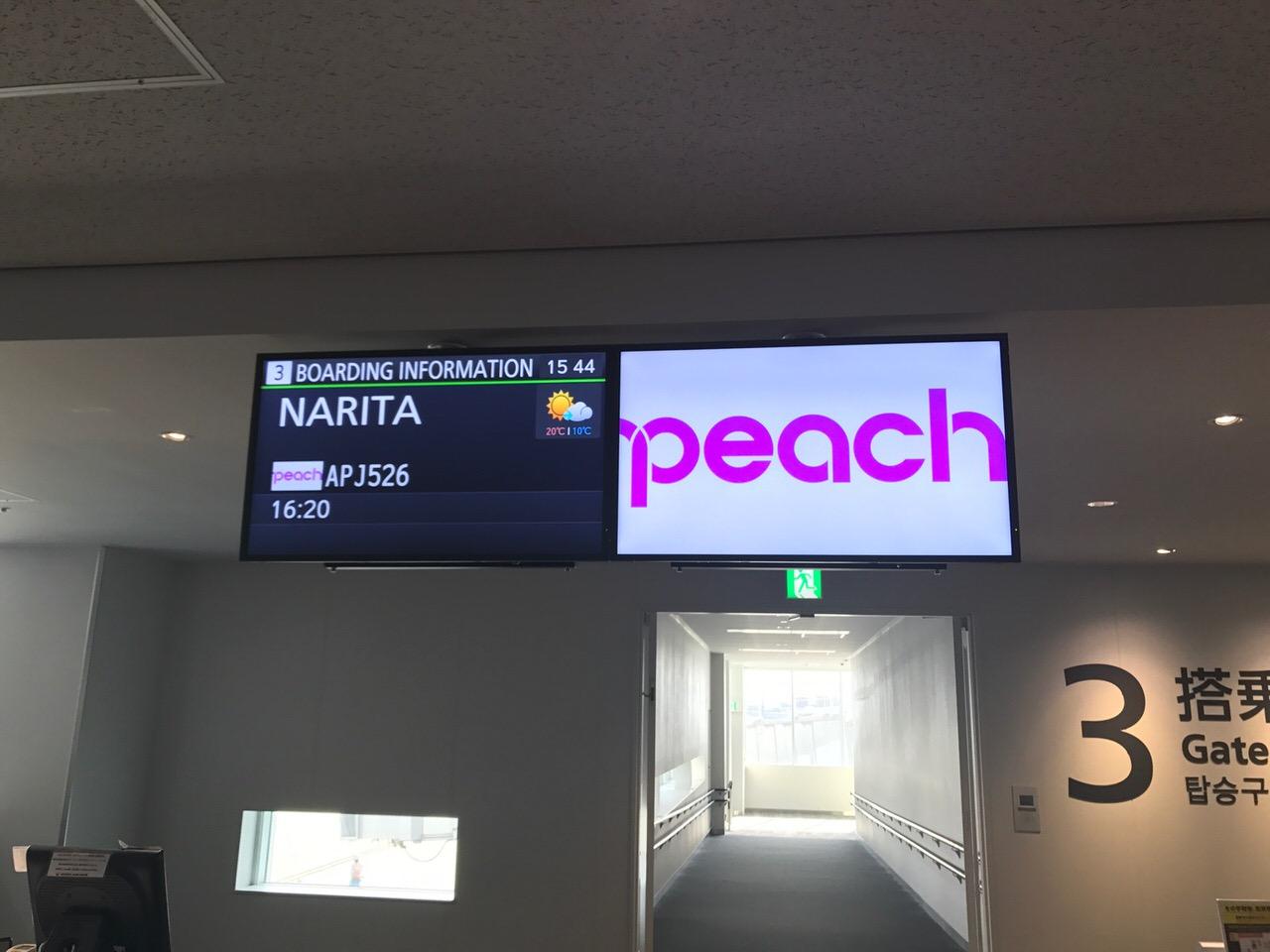 Peach 776
