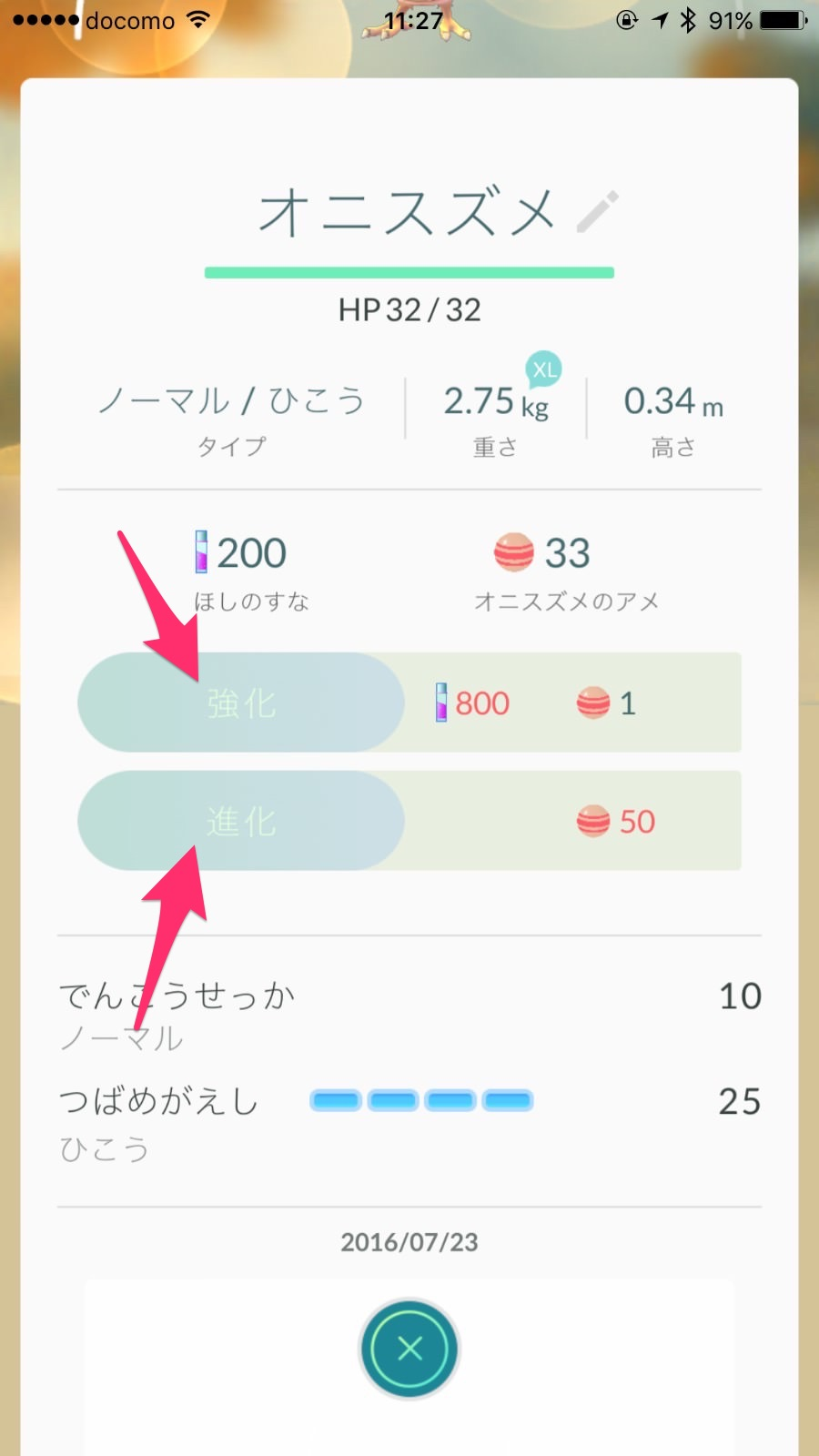 Pokemon go 462