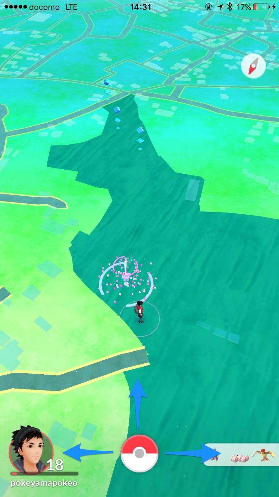 Pokemon go 67084