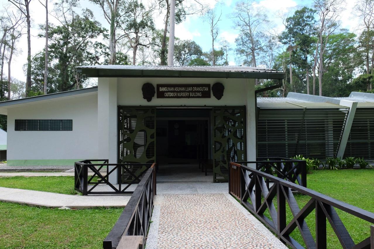 Sepilok orangutan rehabilitaion centre 9654