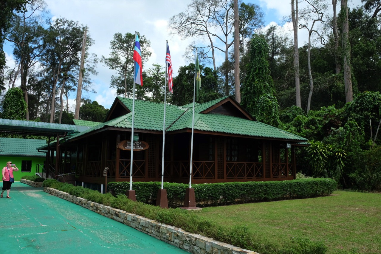 Sepilok orangutan rehabilitaion centre 9692