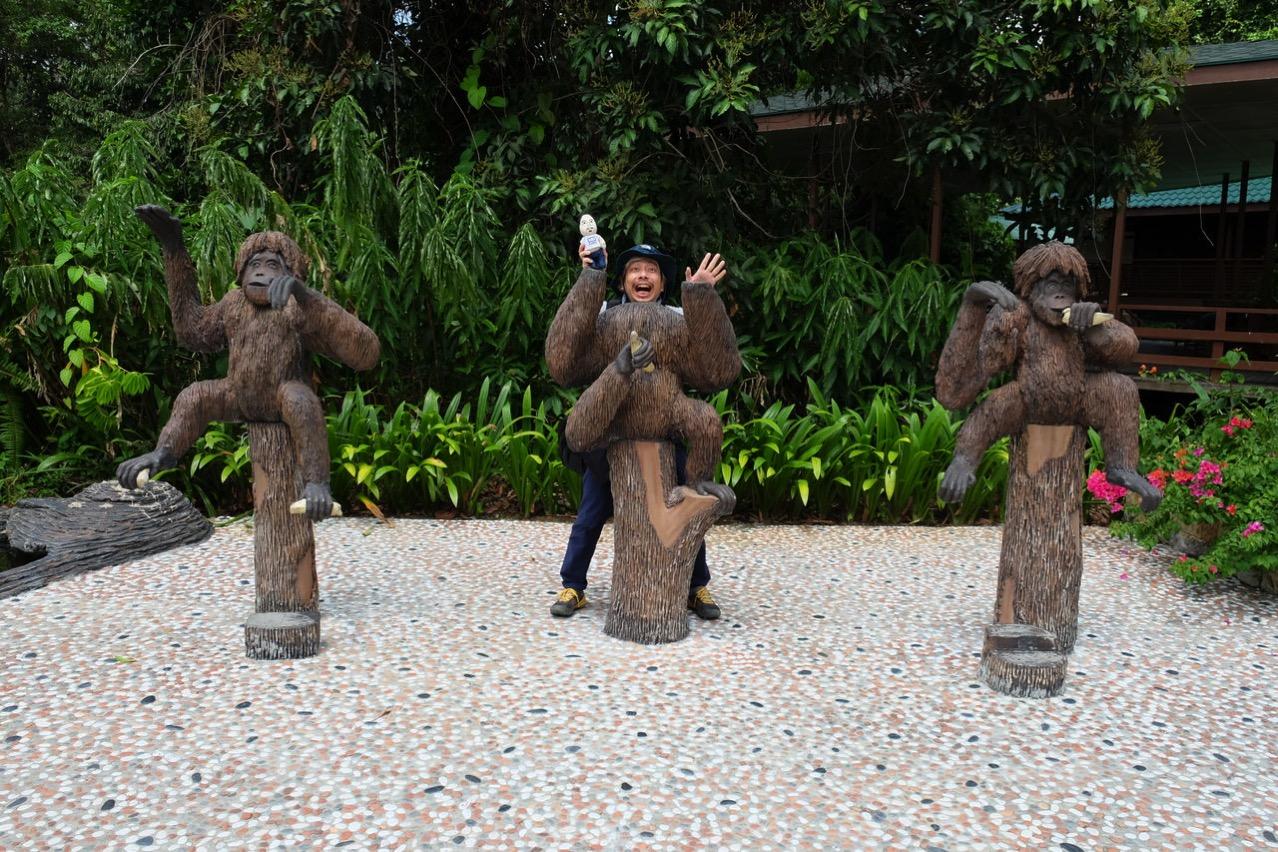 Sepilok orangutan rehabilitaion centre 9694