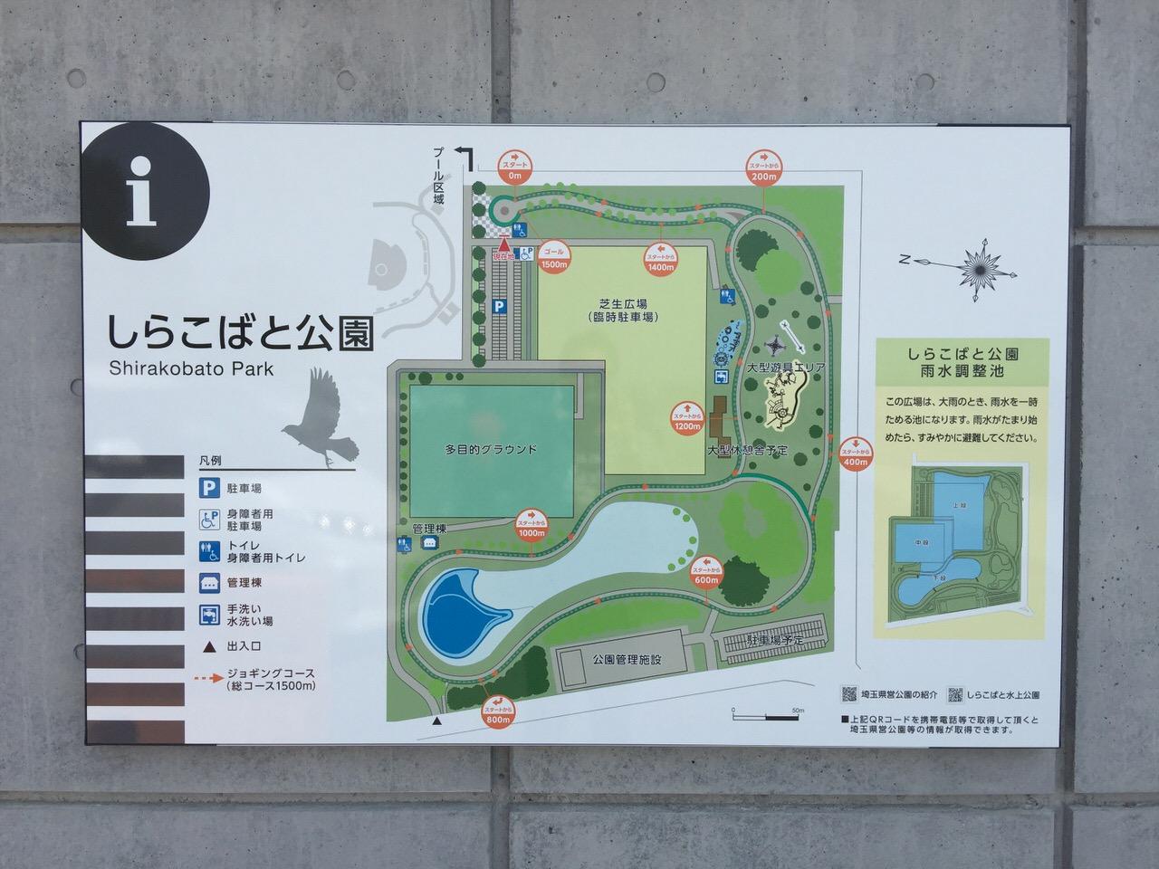 Shirakobato 3454