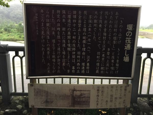 Tamagawa josui 6156