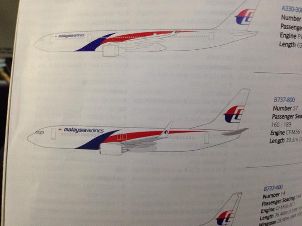 【マレーシア航空】成田空港からコタキナバルへの直行便(B737)でフライト