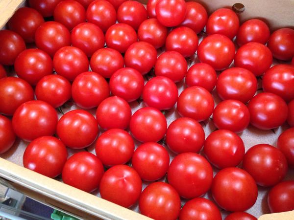 いわきのブランドトマト「サンシャイントマト」濃い!味が濃くて鮮烈!食べ放題したいくらい美味い! #勝手にいわきガイド