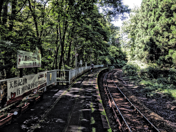 会津鉄道、塔のへつり駅、鉄橋を走る。 #福島美味 #会津下郷