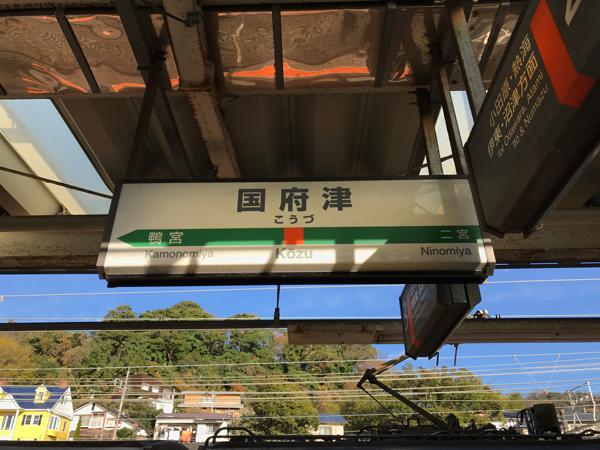 【湘南新宿ライン】国府津行きに乗って初めて国府津まで【上野東京ライン】