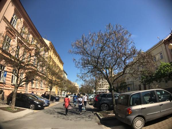 「プルゼニュ」欧州2番目のシナゴーグ、バーソロミュー大聖堂、マリオネット博物館を散策 #プルゼニュ #チェコへ行こう #visitCzech