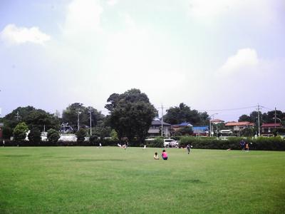 Imag7453