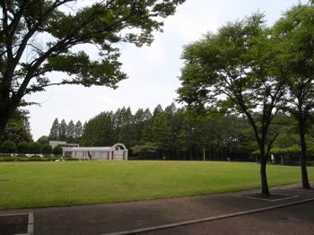 さぎ山記念公園(さいたま市緑区)