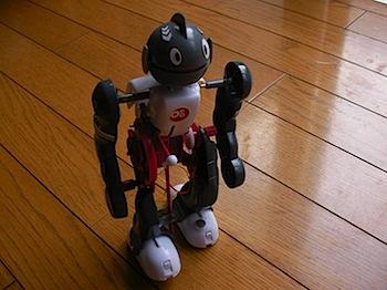 ジタバタしまくり転んでも自力で立ち上がる二足歩行「コロボット」
