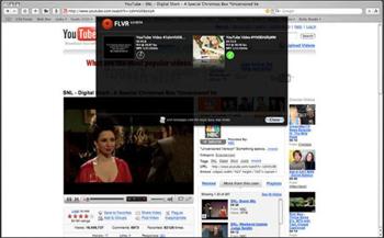 Wp-Content Uploads 2007 09 Flvr