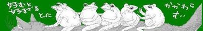 Catfrog1