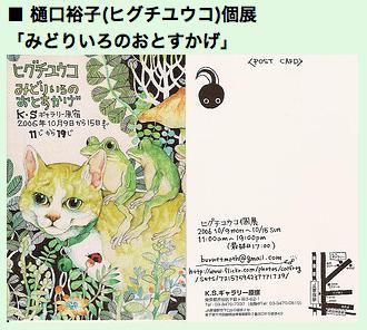 Catfrog2