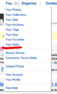 Flickr Stats 11