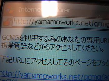 google_cal_gw_20080421_R0014529.JPG