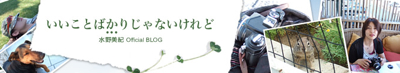 Mizuno Blog