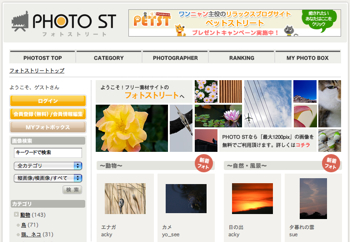 Photostreet1