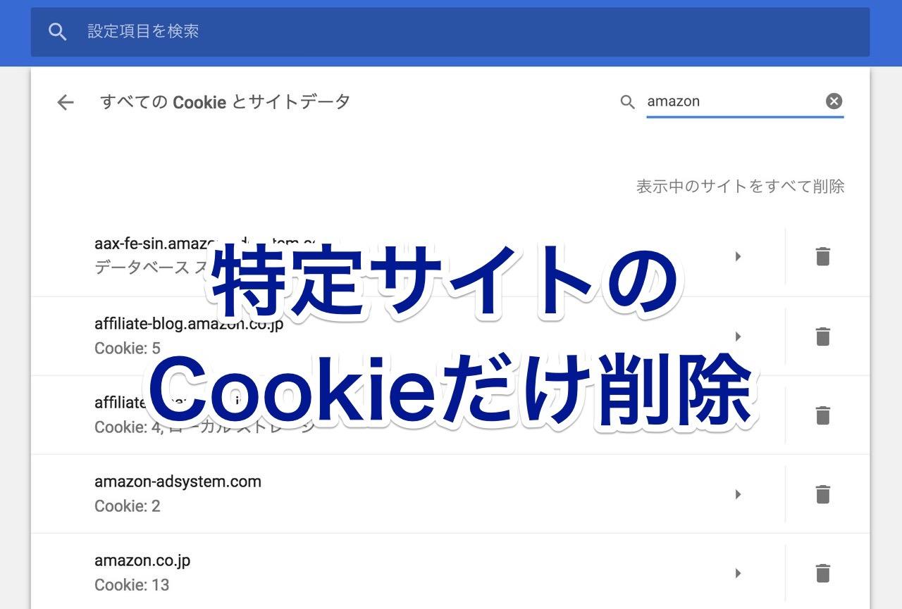 特定サイトのCookieのみを削除