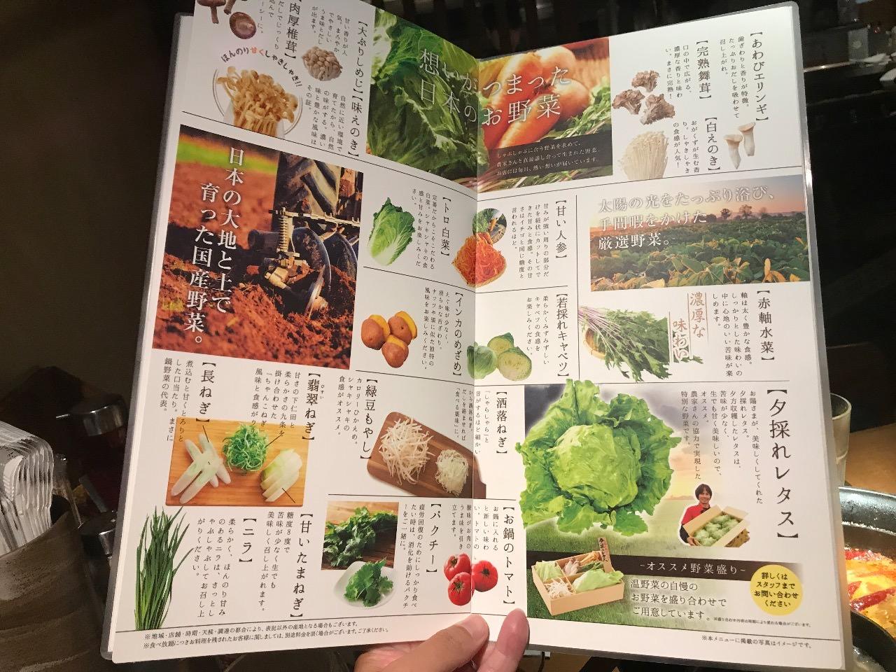 夕採れの新鮮な野菜