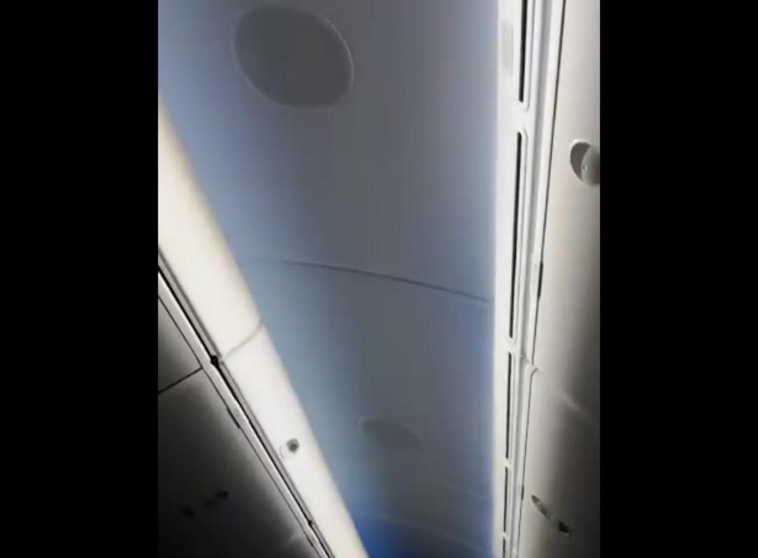 【動画】最年少オセロ世界チャンピオン帰国のANA便で奇跡が起きる