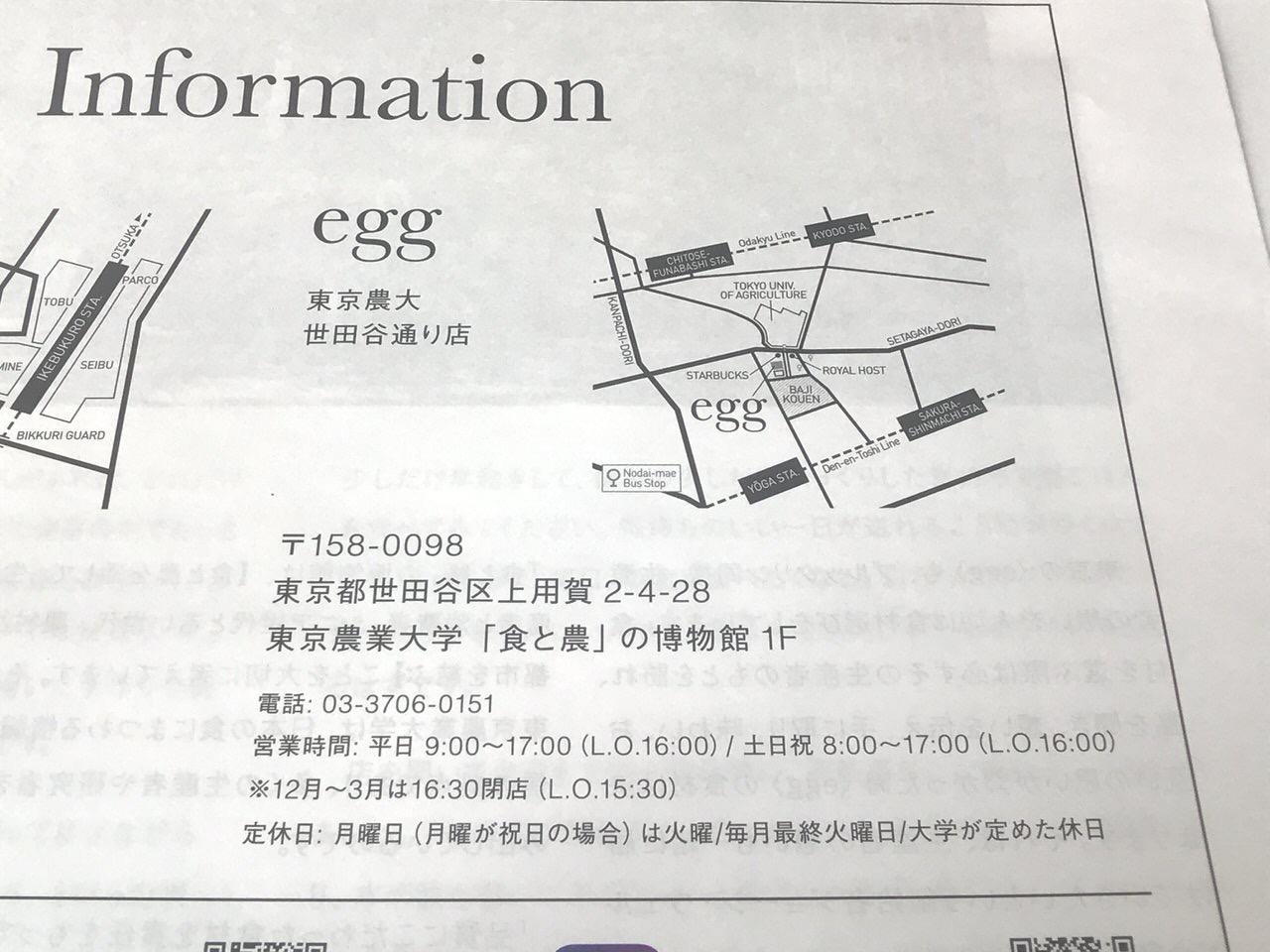 egg東京農大店 チラシ