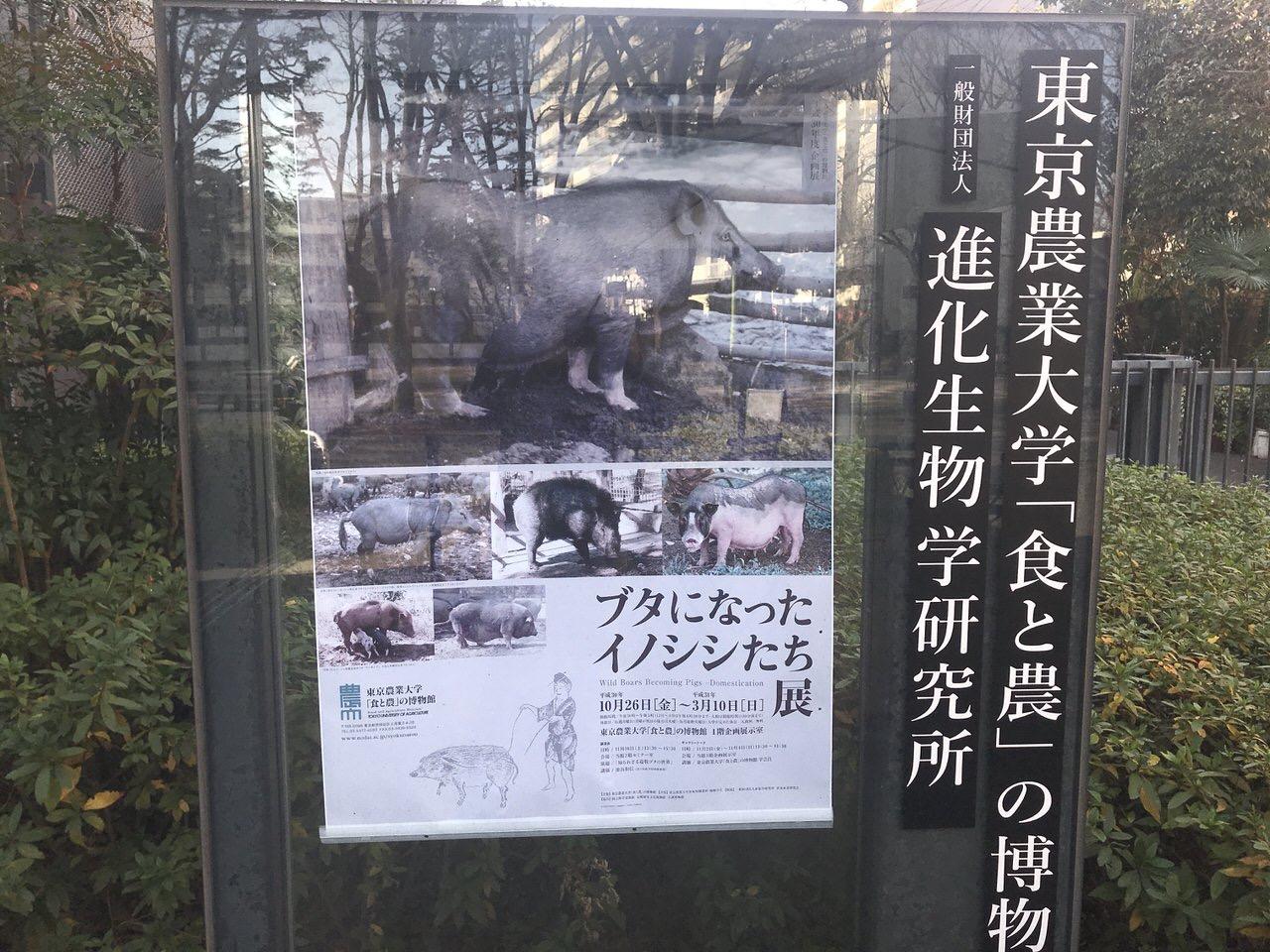 博物館の看板