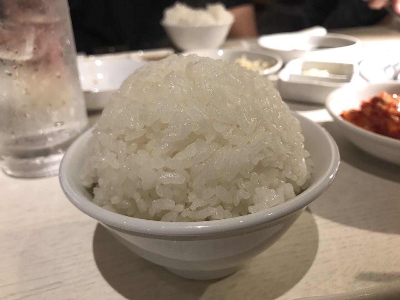 焼肉笹塚園 肉 11