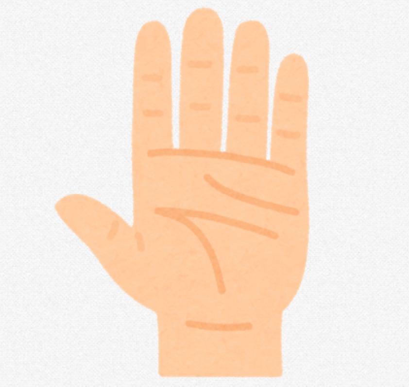 水道水に5分くらい手のひらを浸しておくと血液を通して深部体温を下げることができる→手のひらはラジエーターだった