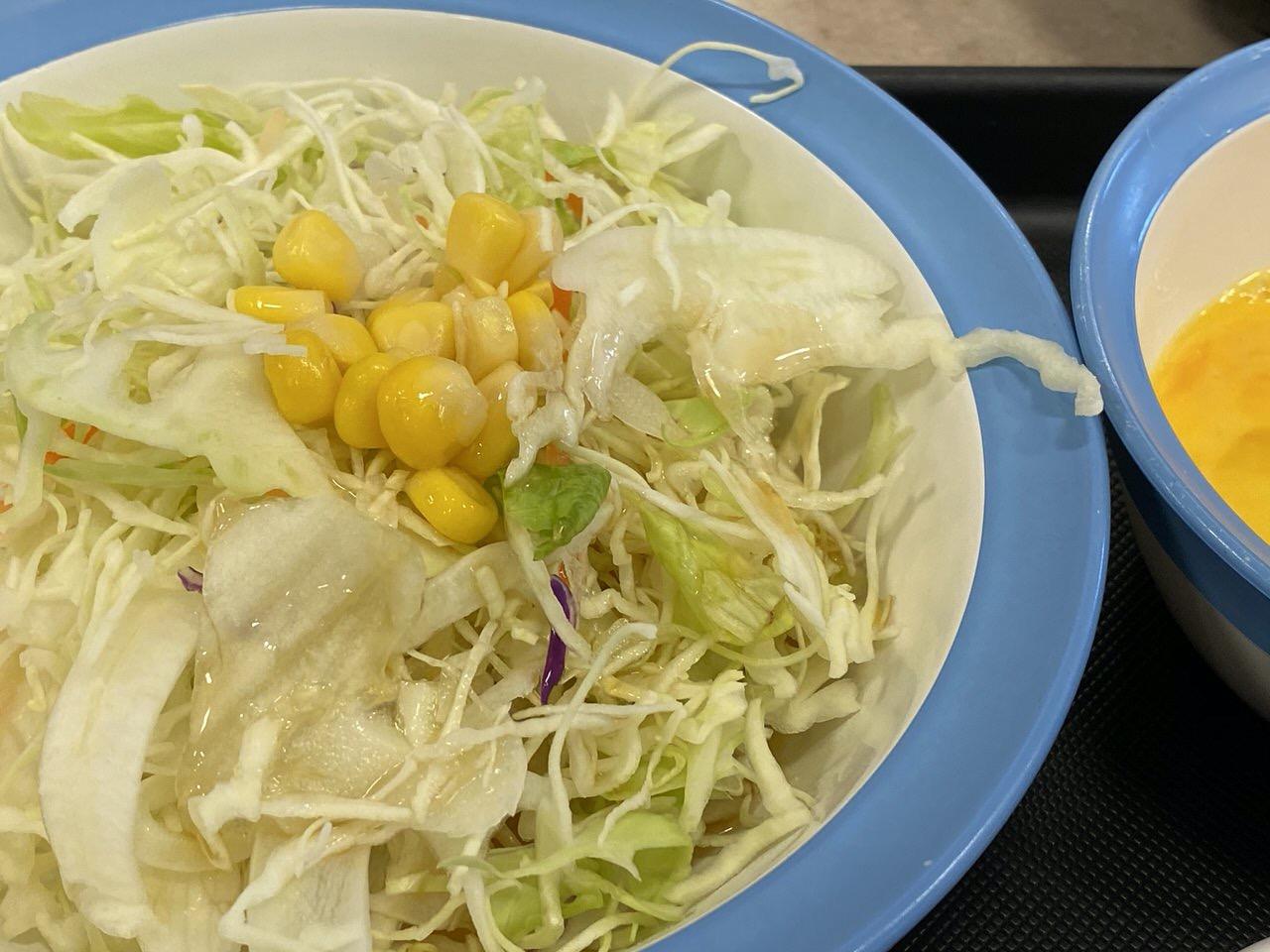 【松屋】プルコギ定食 10