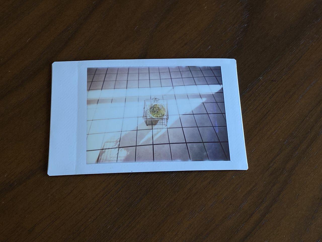 インスタントトイカメラ「Pixtoss(ピックトス)」17