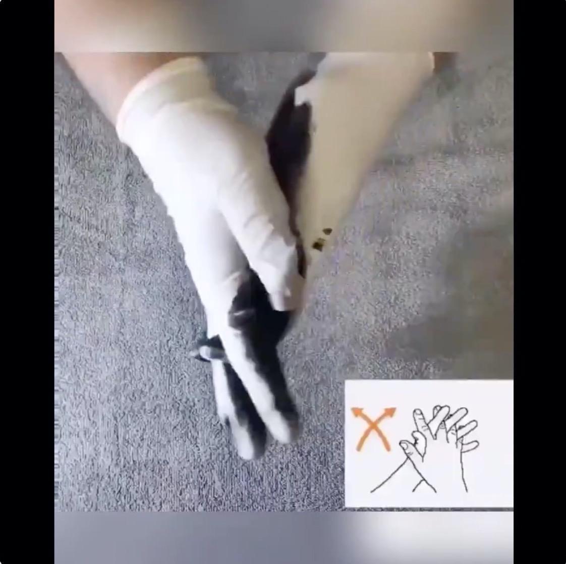 ここまでやる!手の洗い方がとても良く分かる動画