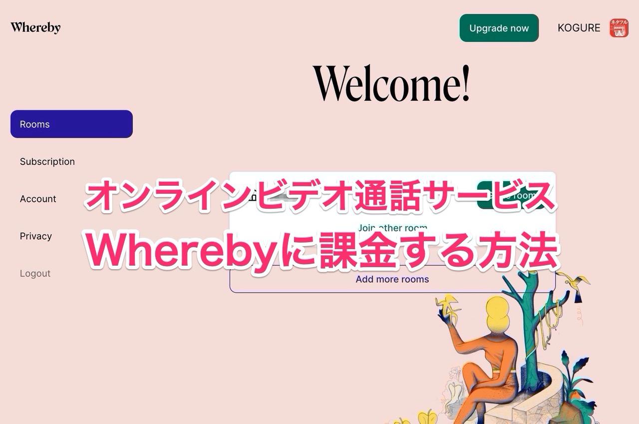 【オンライン飲み会】「Whereby」に課金してみた